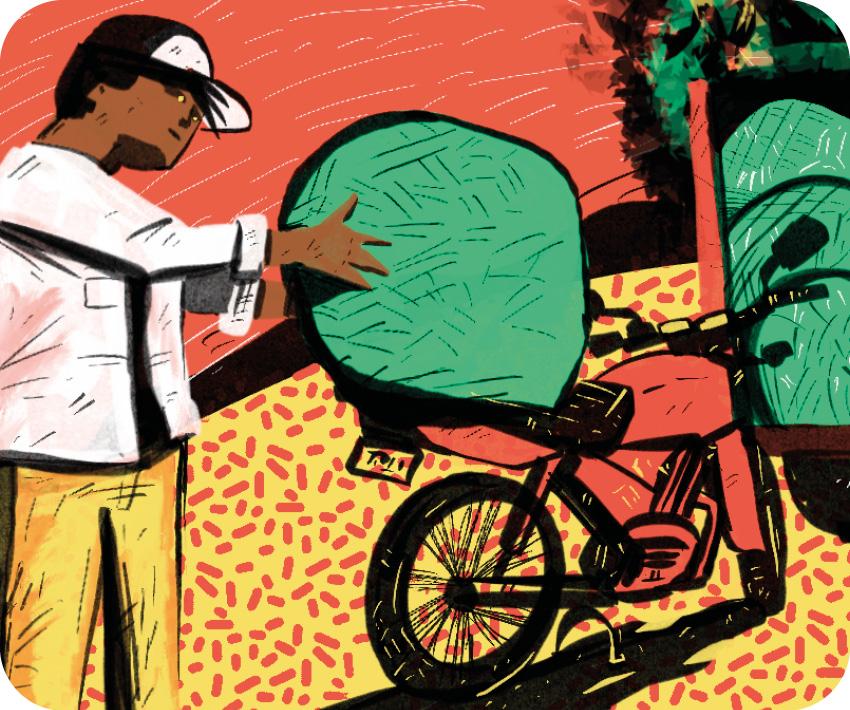 CAP0110 Brasiguaio: Como o Brasil fez do Paraguai o maior produtor de cannabis